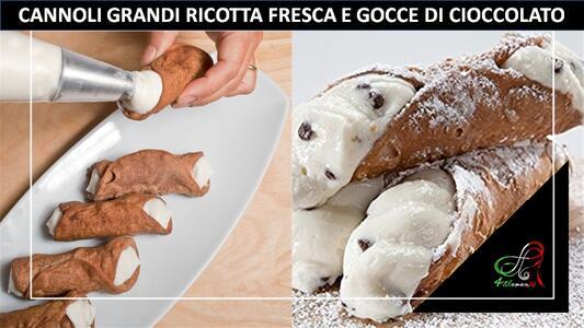 CONFEZIONE 6 CANNOLI RICOTTA E GOCCE DI CIOCCOLATO