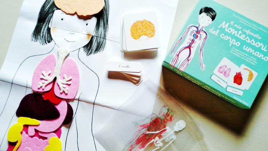 Il mio cofanetto Montessori del corpo umano