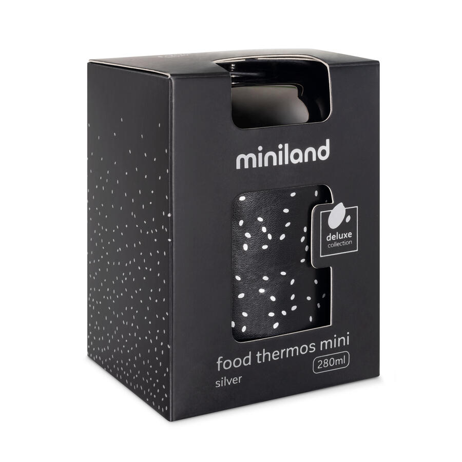 Food Thermos Mini Deluxe Silver