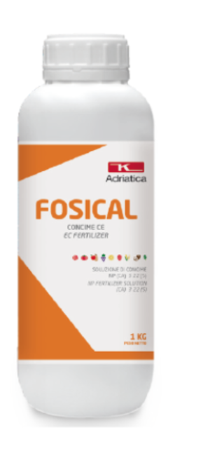Concime Fosical 1 Kg