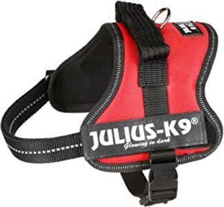 Julius K9 Rossa XS Mini 40-53 cm peso 4-7 kg Rosso Pettorina Cani