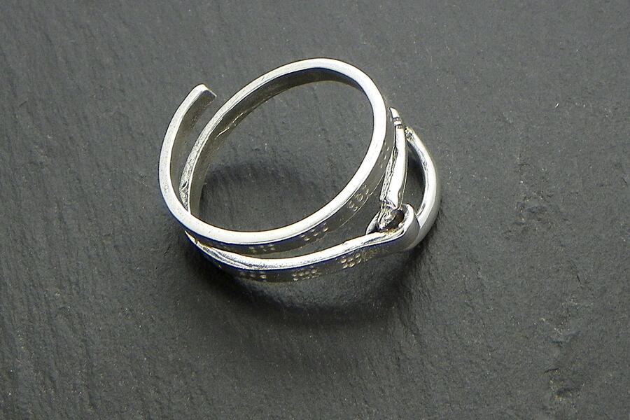 Ring Carabiner climber