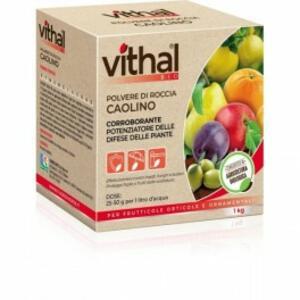 Concime BIO Caolino 1kg Vithal