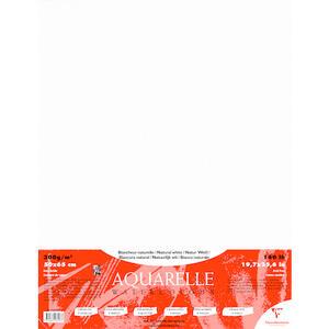 Confezione fogli CARDINAL 50x65 5 fogli 300 gr  grana fine/grana ruvida