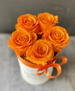 FLOWER BOX T5 Rossana Collection ARANCIO