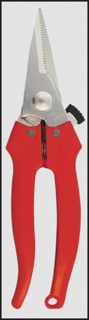 Forbice Cogliuva Lama dritta GL010 Cordioli