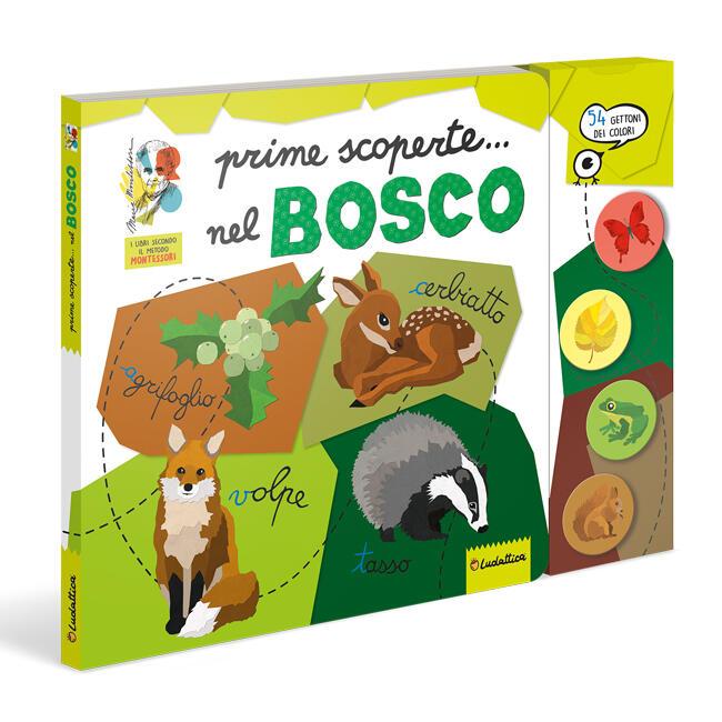 Montessori - Prime scoperte...del bosco