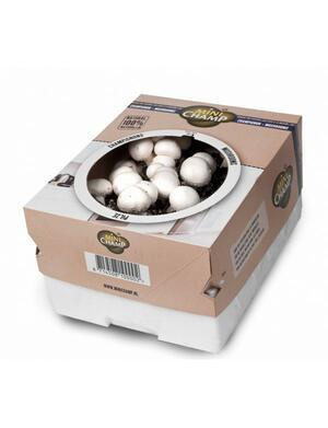 Substrato di Funghi Bianchi confezione da 7,5 lt KAPITEYN
