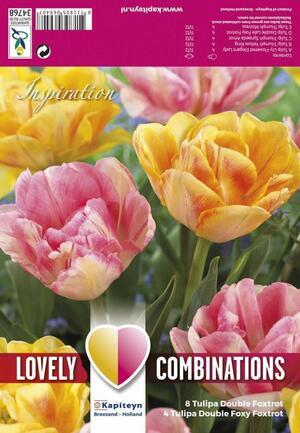 Bulbi Autunnali di Tulipano Combi Double Orange & Pink confezione da 12 pz KAPITEYN