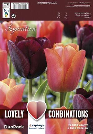 Bulbi Autunnali di Tulipano Combi Triumph Purple & Orange confezione 15 pz KAPITEYN