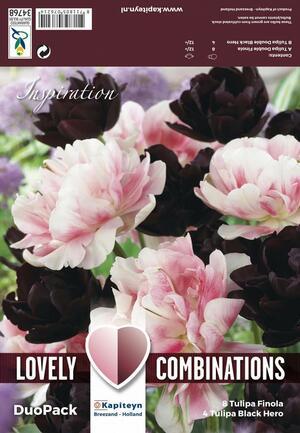 Bulbi Autunnali di Tulipano Combi Double Black & Pink confezione 12 pz KAPITEYN