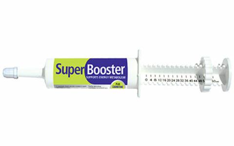 SuperBooster Pasta 60ml