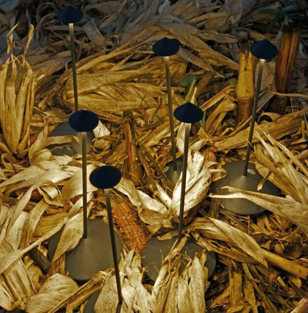 Lampada Ricaricabile da Tavolo PINA PRO Colore Grigio Scuro di Zafferano in Pronta Consegna - Offerta di Mondo Luce 24