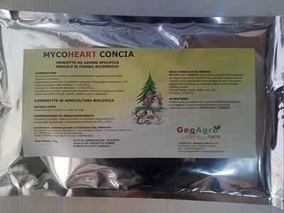 MYCOHEART CONCIA inoculo di micorrize per la concia dei semi busta da 1 kg