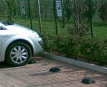 Park STOP - radschlösser für Parking und Garage