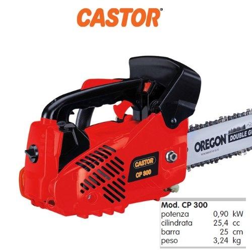 Motosega da potatura CASTOR Alpina Castelgarden modello CP 300 pota barra cm 25 cilindrata 25,4 cc