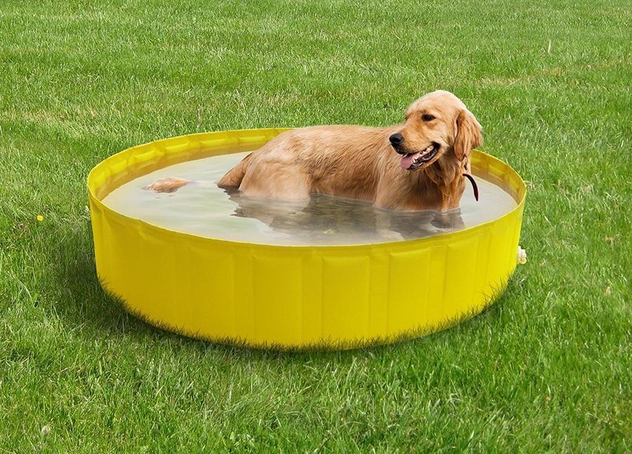 Piscina per animali MY DOG POOL 90 diametro 90 alta 30