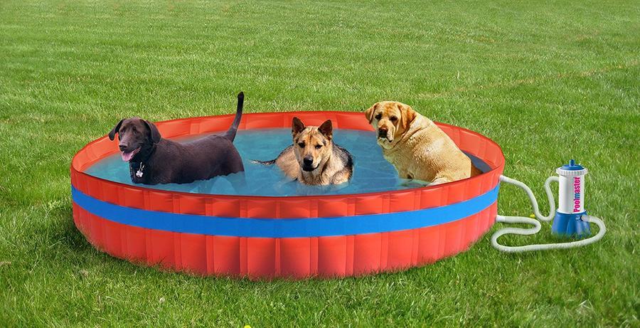 Piscina per animali MY DOG POOL 305 PRO diametro 305 alta 30 con filtro cartuccia
