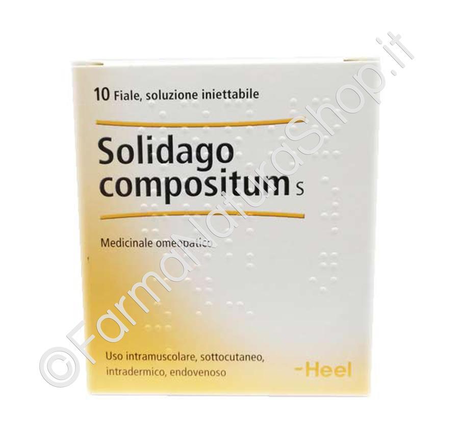 HEEL SOLIDAGO COMPOSITUM S Fiale