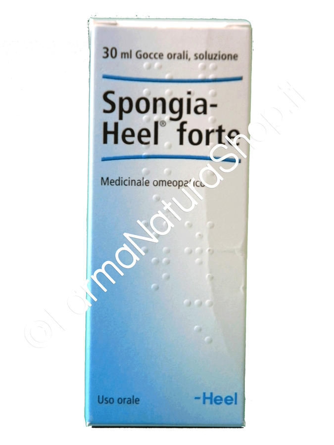 HEEL SPONGIA FORTE Gocce