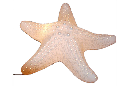 Lampada a Forma di Stella Marina in Porcellana di Artesania Esteban - Mondo Nautica 24