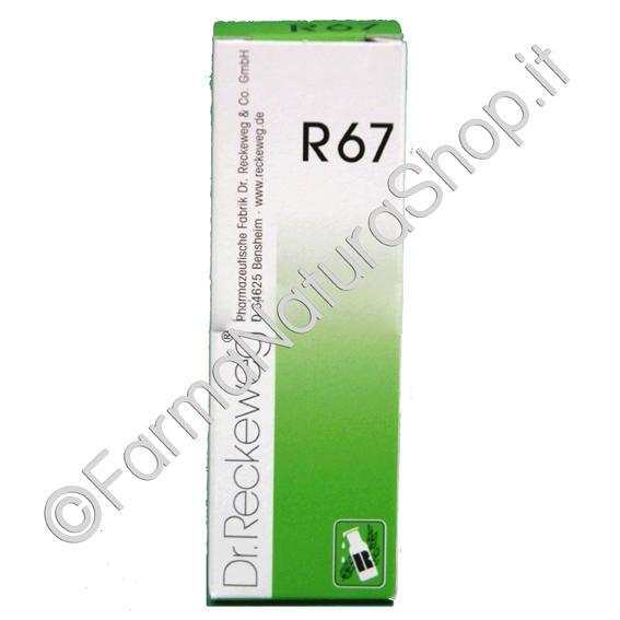 DR. RECKEWEG R67 Gocce