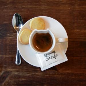 Crazy Cat Cup Espresso