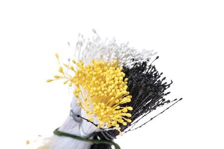 Set 864 pistilli per fiori bianco, nero, giallo