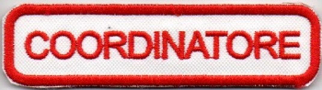Patch COORDINATORE