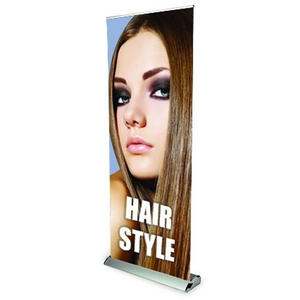 Roll Up platinum 85x200