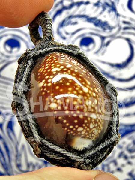 Conchiglia Amuleto Portafortuna