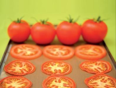 Drysilk 5 Fogli Antiaderenti per Essiccare 5 Fogli Antiaderenti, multiuso, riutilizzabili migliaia di volte - per essiccare prodotti in fetta, alimenti acquosi, puree, piccole foglie e fiori