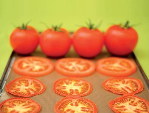 Drysilk 6 Fogli Antiaderenti per Essiccare 6 Fogli Antiaderenti, multiuso, riutilizzabili migliaia di volte - per essiccare prodotti in fetta, alimenti acquosi, puree, piccole foglie e fiori