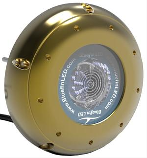 Led Subacqueo Hammerhead H16 da 6600 lumen di Bluefin LED - Offerta di Mondo Nautica 24