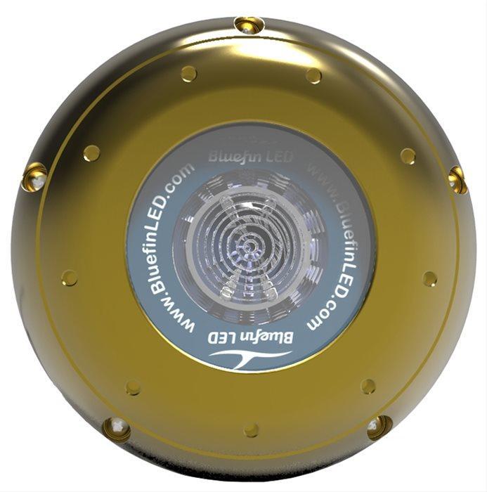 Led Subacqueo Hammerhead H20 da 12500 lumen di Bluefin LED - Offerta di Mondo Nautica 24