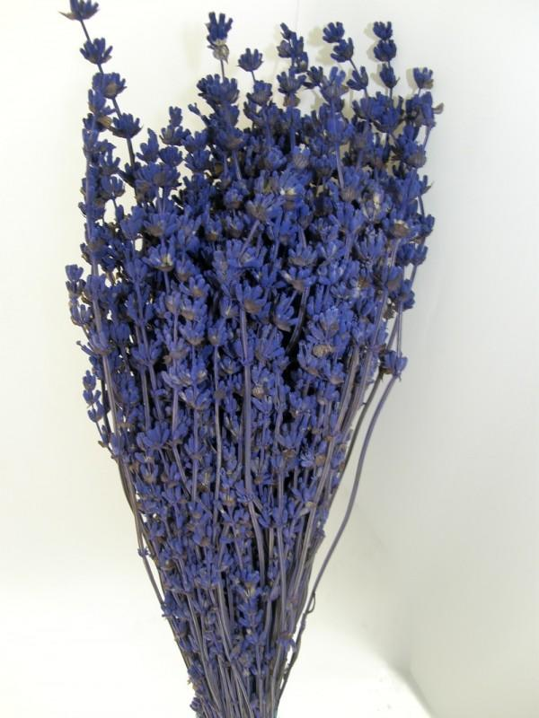 LAVANDA STABILIZZATA SOFT LIGHT