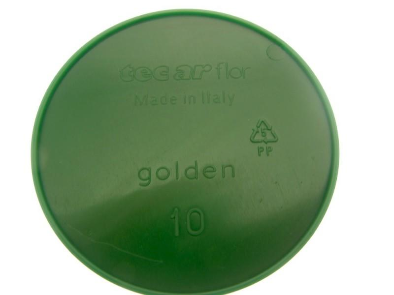 CIOTOLA GOLDEN Ø10 GREEN