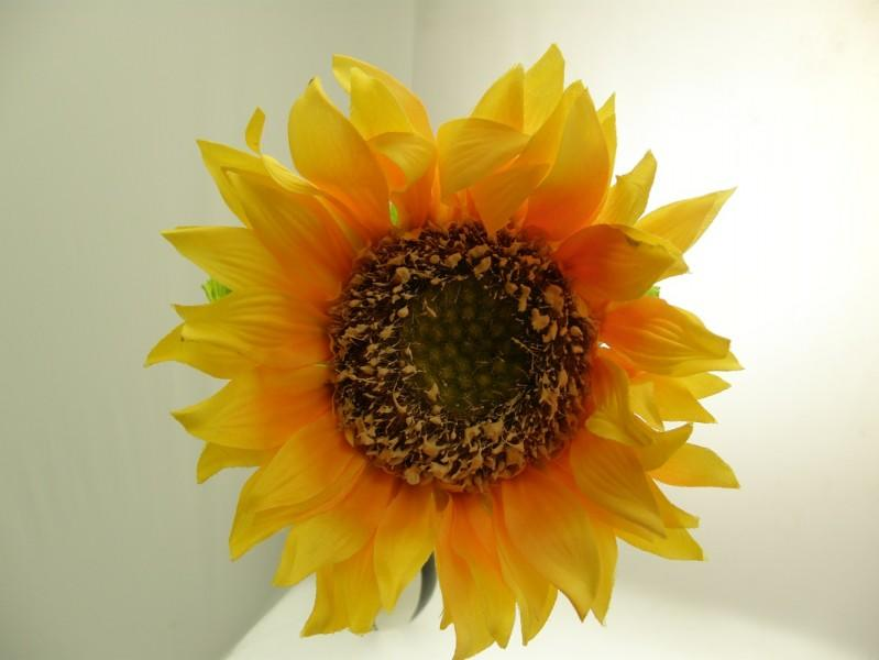 GiRASOLE SATIN GIALLO YELLOW