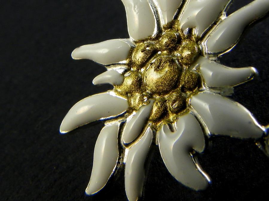 Edelweiss Ciondolo smaltato