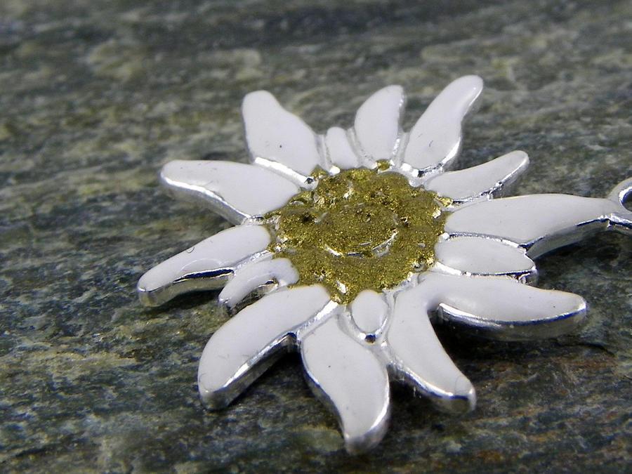 Edelweiss Bracciale in Argento smaltato