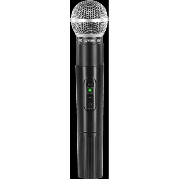 ProAudio PW210 - Microfono Wireless