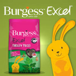 Burgess Excel Parsley Pieces - Snack