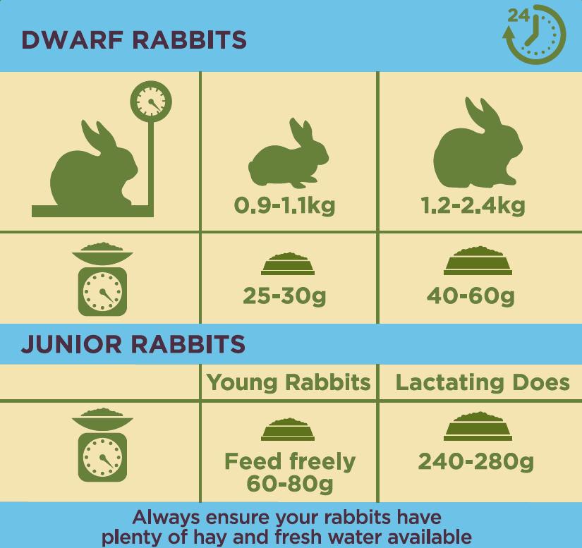 Burgess Rabbit Junior and Dwarf Nuggets - 4 Kg.