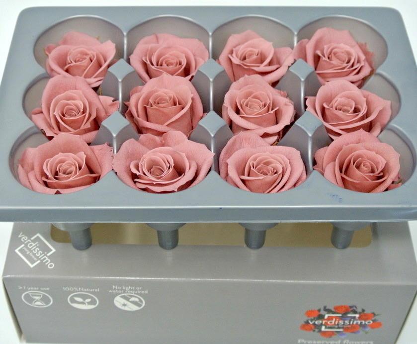 ROSA BOCCIOLO MINI COLORE CHERRY BLOSSOM STABILIZZATA - BOX DA 12