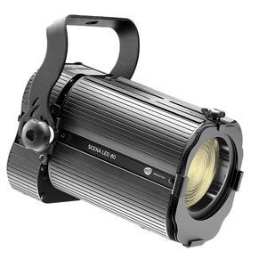 DTS Scena LED 80 CT Fresnel