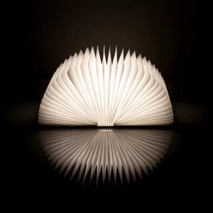 LAMPADA LIBRO LUCE A LED