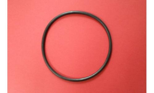 10492 anello x coperchio pompa INTEX