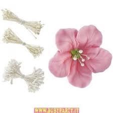 pistilli per fiori bianchi wilton