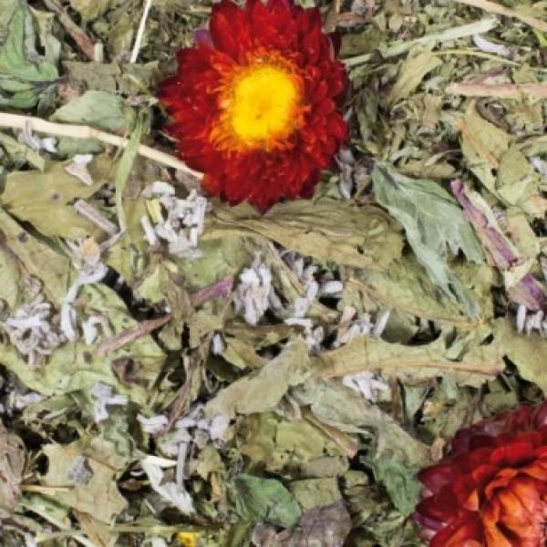 Jr Farm Grainless Plus Salvia e Dente di Leone - Respiro