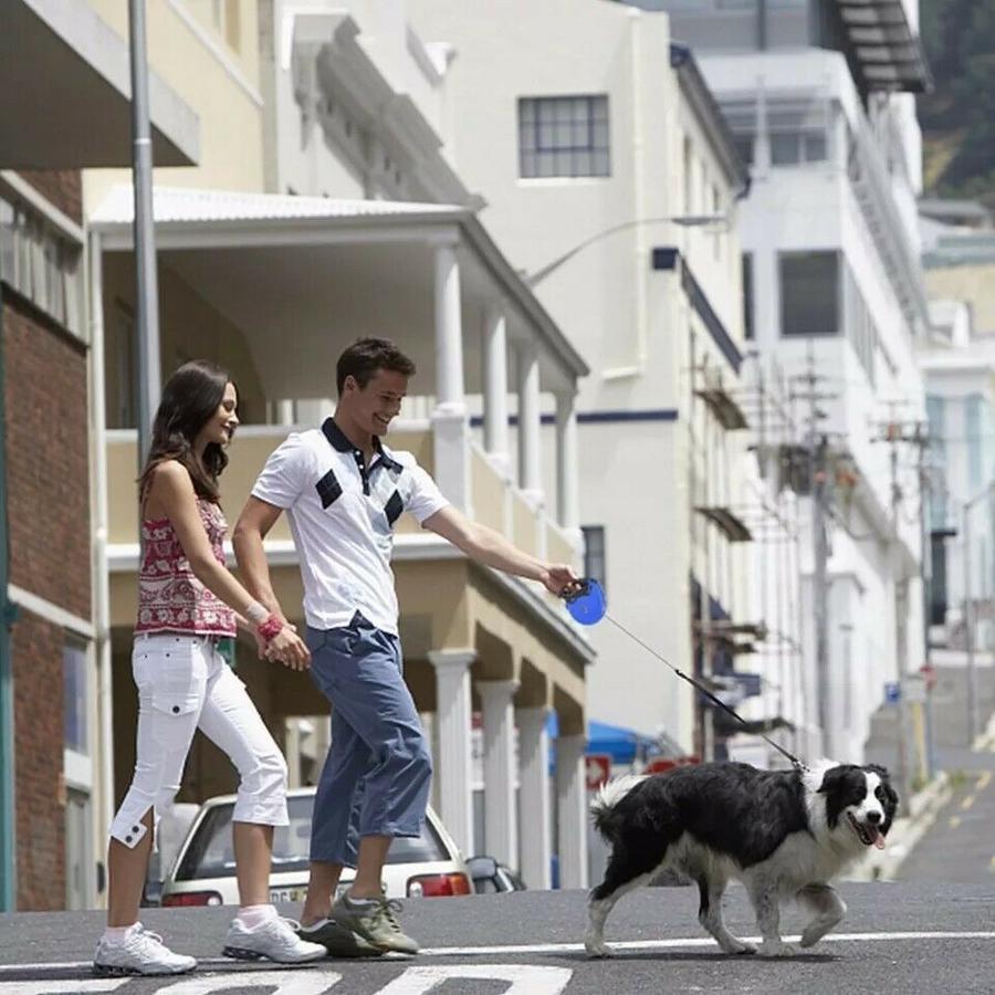Guinzaglio per Cane da passeggio Regolabile Fluorescente Retrattile fino 5 metri
